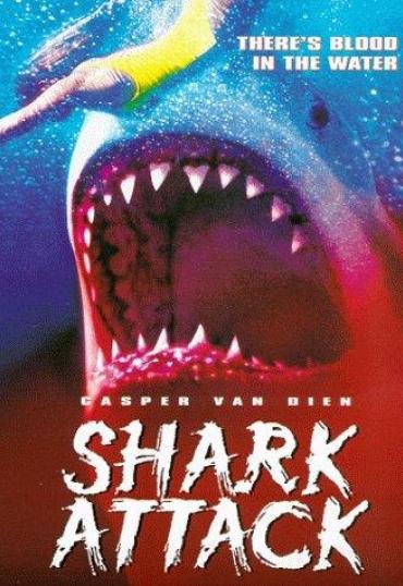 Shark attack – Squali all'attacco