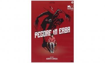 Pecore in erba (DVD)