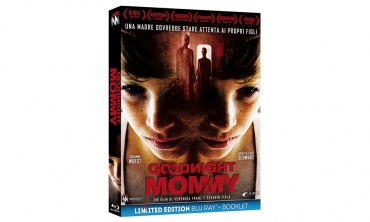 Goodnight Mommy (DVD)