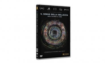 Il senso della bellezza - Arte e scienza al CERN (DVD)