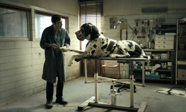 Dogman, il nuovo film di Matteo Garrone che si è guadagnato dieci minuti di applausi a Cannes